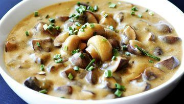 vegan cream of mushrooms soup