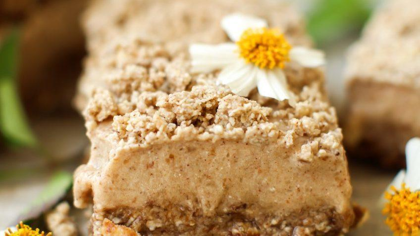 vegan cinnamon streusel ice cream bars