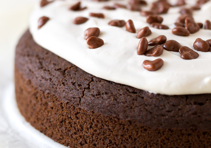 vegan gluten free chcolate cake